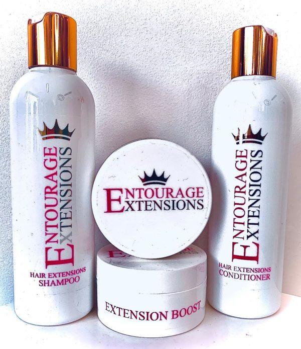 entourage extensions